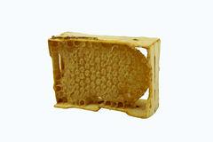 Bee honeycomb in wooden frame on a white background Stock Photos