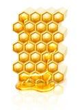 Bee honeycombs Royalty Free Stock Photos