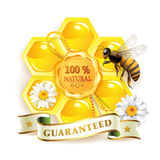 Bee with honeycombs Royalty Free Stock Photo