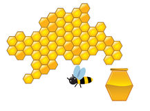 Bee and honeycombs royalty free stock image