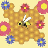 Bee and honeycombs. Bee honeycomb honey nectar flowers red blue illustration vector background beautiful Stock Image