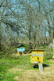 Bee house in country place stock photos