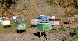 Bee houses. Old bee houses in mountains royalty free stock photos