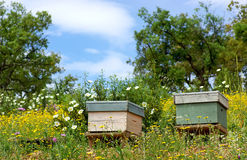 Bee houses at Portugal. Royalty Free Stock Image