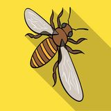 A bee, a hymenopteran insect. Stinging insect bee single icon in flat style vector symbol stock isometric illustration Royalty Free Stock Photography
