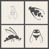 Bee icon Royalty Free Stock Images