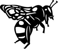 Bee Illustration. Line Art Illustration of a Bee Royalty Free Stock Image