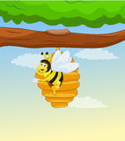 Bee inside honey comb on tree Stock Images