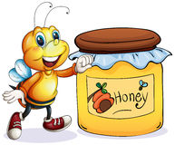 A bee beside the jar of honey Royalty Free Stock Image