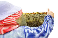 Bee-keeper Stock Image