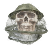 Bee Keeper Hat on Skull Royalty Free Stock Photo