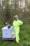 Bee-keeper in a protective suit. In an apiary royalty free stock photos
