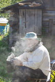 Bee-keeper. In a protective suit with bee smoker for smoking of bees stock photo