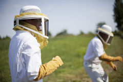 Bee Keepers Stock Images