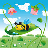Bee on the leaf stock illustration