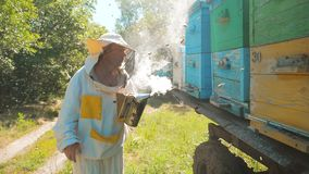 Bee-maker beekeeper man working of a smoke pipe beeper wooden hives smoker device for repelling evil bees. slow motion stock video footage