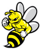 Bee mascot. Vector of bee mascot, suitable for your sport team Stock Photo