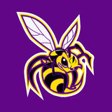 Bee mascot.yellow jacket. Bee mascot .vector illustration.yellow jacket Royalty Free Stock Photo