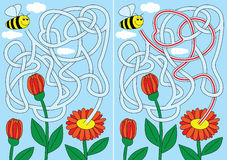 Bee Maze Royalty Free Stock Photos