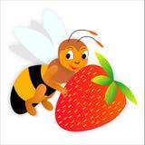 Bee nad strawberry Royalty Free Stock Photos