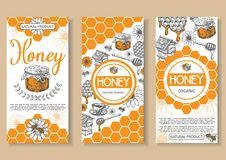 Bee natural honey vector hand drawn flyer set. Bee natural honey vector poster, flyer, banner set. Hand drawn honey natural organic product concept design vector illustration
