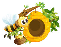 A bee near the beehive Royalty Free Stock Photography