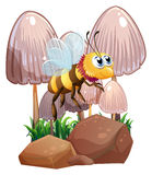 A bee near the mushrooms and rocks Stock Photography