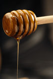 Bee nectar. Natural golden honey oozing from a wooden drizzler Stock Images