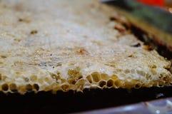Bee nest Stock Photography