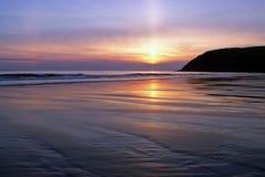 bee odcisk stopy na plaży st. Fotografia Royalty Free