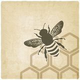 Bee old background vector illustration