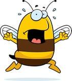 Bee Panic Royalty Free Stock Photography
