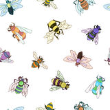 Bee pattern. Colorful insect hand drawn background. EPS10 Stock Images