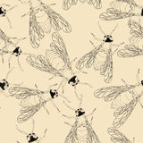 Bee pattern. Seamless pattern design with bees Stock Photos