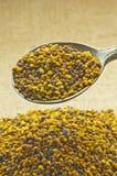 Bee pollen Stock Photos