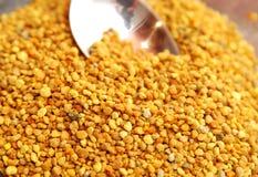 Free Bee Pollen Stock Image - 4801521