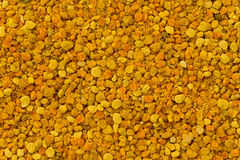 Bee Pollen Royalty Free Stock Photos