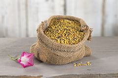 Bee pollen in a bag Stock Image