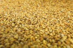 Raw Organic Bee Pollen Stock Photography