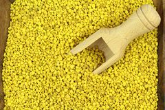 Bee pollen. Bee pollen in a wood plate and scoop Stock Image