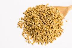 Bee pollen closeup Royalty Free Stock Photos