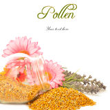 Bee pollen in glass jar and flowers Royalty Free Stock Images