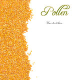 Bee pollen grains with copy space. Bee pollen grains with blank space for text royalty free stock photography
