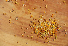 Bee pollen Royalty Free Stock Photos