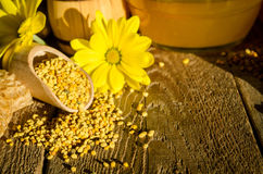 Bee pollen granules  in wooden scoop and flowers Royalty Free Stock Photos