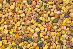 Bee pollen macro. Multicolored natural honeybee pollen macro image Stock Images