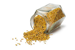 Bee pollen in a pot. On white background stock image