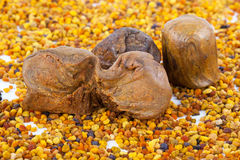 Bee pollen and propolis. Background for design Stock Photos