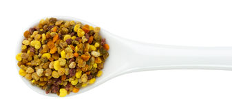 Bee pollen in spoon isolated on the white background Stock Photo