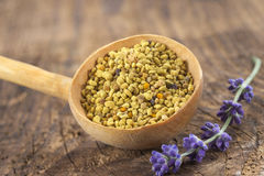 Bee pollen in the spoon on wooden background. Bee pollen in the spoon on white stock photo